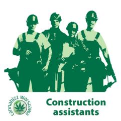 Asystent pomocy budowlanej Cannabizz